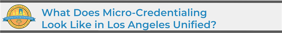 What Does Micro-Credentialing Look Like Header