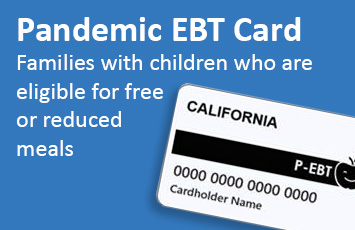 Pandemic EBT Card information
